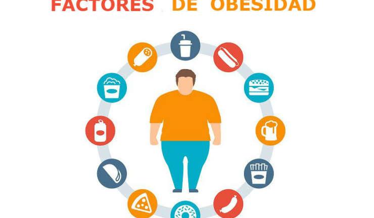 PRINCIPALES FACTORES DE SOBREPESO Y OBESIDAD EN EL PERÚ